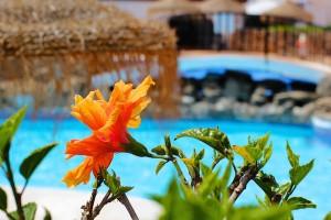 Pool i Capistrano Village