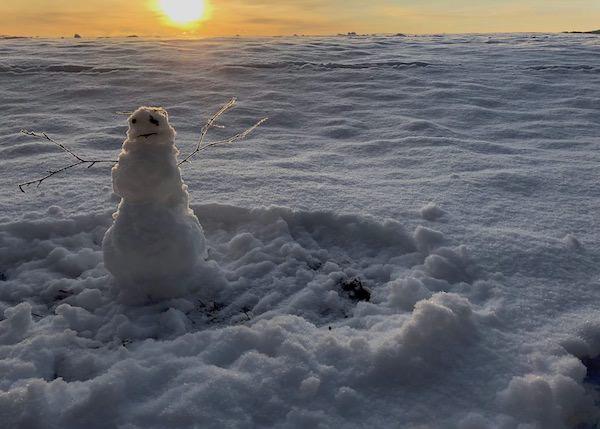 Bild på snöman